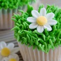 These daisy-themed cupcakes are perfect for a baby shower!